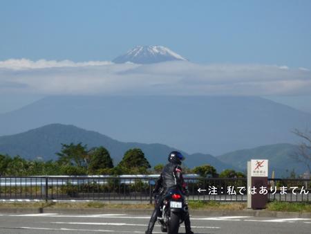 大観山から富士山見えた
